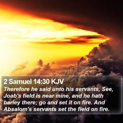 2 Samuel 14:30 KJV Bible Verse Image