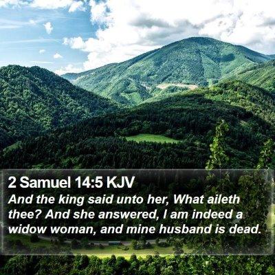 2 Samuel 14:5 KJV Bible Verse Image
