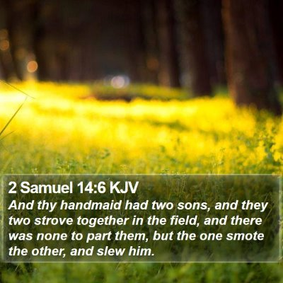 2 Samuel 14:6 KJV Bible Verse Image