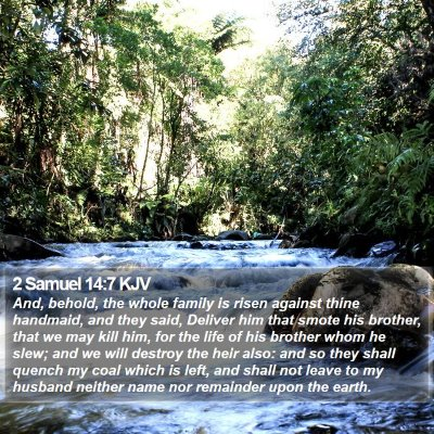 2 Samuel 14:7 KJV Bible Verse Image