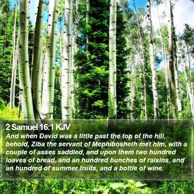 2 Samuel 16:1 KJV Bible Verse Image