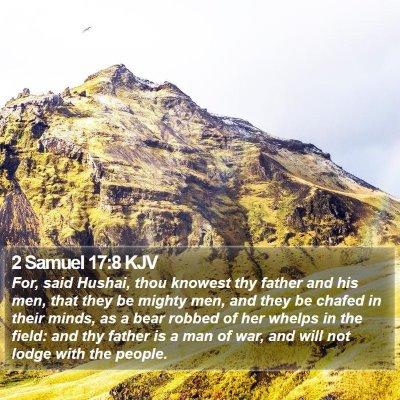 2 Samuel 17:8 KJV Bible Verse Image