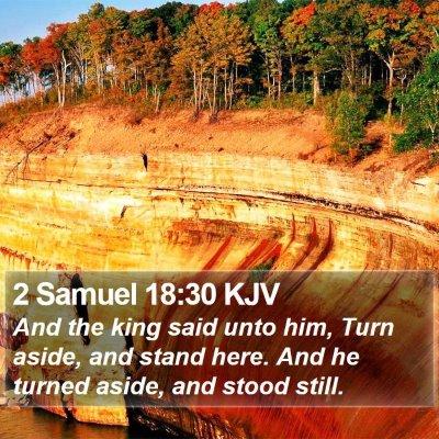 2 Samuel 18:30 KJV Bible Verse Image