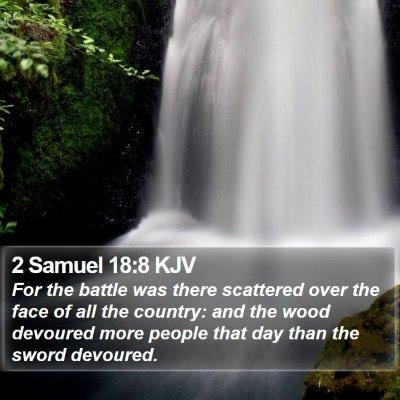 2 Samuel 18:8 KJV Bible Verse Image