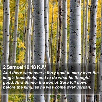 2 Samuel 19:18 KJV Bible Verse Image