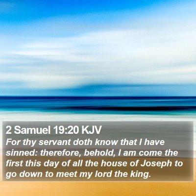 2 Samuel 19:20 KJV Bible Verse Image