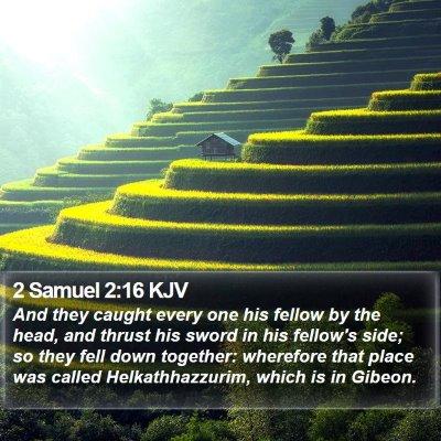 2 Samuel 2:16 KJV Bible Verse Image