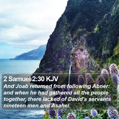 2 Samuel 2:30 KJV Bible Verse Image