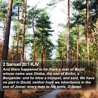 2 Samuel 20:1 KJV Bible Verse Image