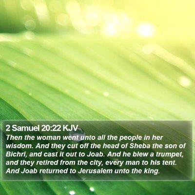 2 Samuel 20:22 KJV Bible Verse Image