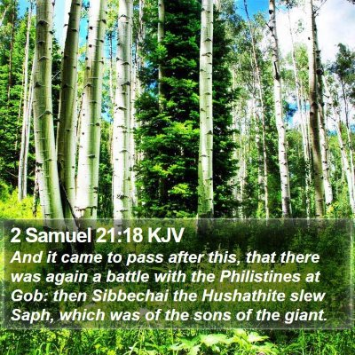 2 Samuel 21:18 KJV Bible Verse Image