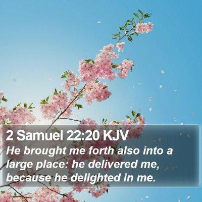 2 Samuel 22:20 KJV Bible Verse Image