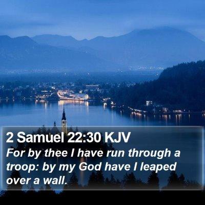 2 Samuel 22:30 KJV Bible Verse Image