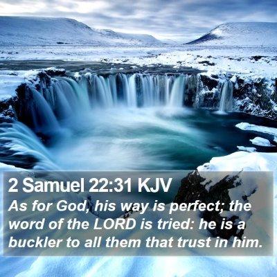 2 Samuel 22:31 KJV Bible Verse Image