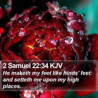 2 Samuel 22:34 KJV Bible Verse Image