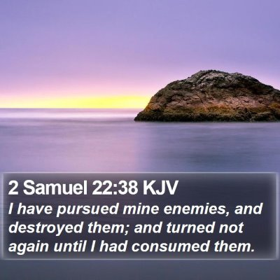 2 Samuel 22:38 KJV Bible Verse Image