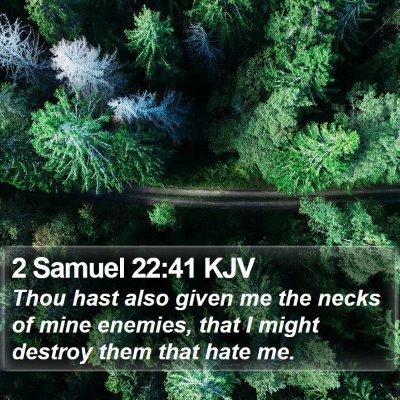 2 Samuel 22:41 KJV Bible Verse Image