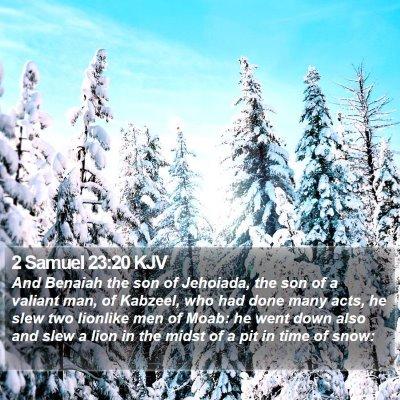 2 Samuel 23:20 KJV Bible Verse Image