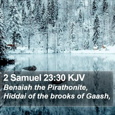 2 Samuel 23:30 KJV Bible Verse Image