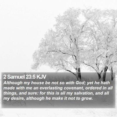 2 Samuel 23:5 KJV Bible Verse Image