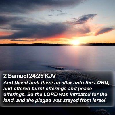 2 Samuel 24:25 KJV Bible Verse Image