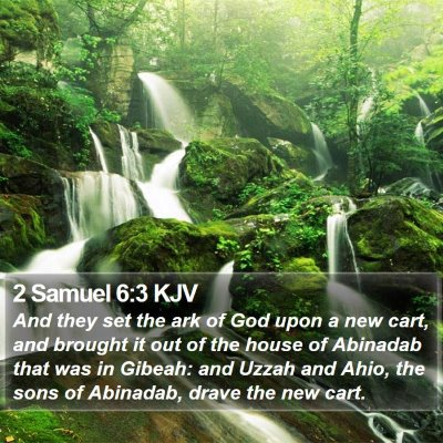 2 Samuel 6:3 KJV Bible Verse Image