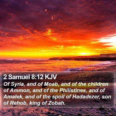 2 Samuel 8:12 KJV Bible Verse Image