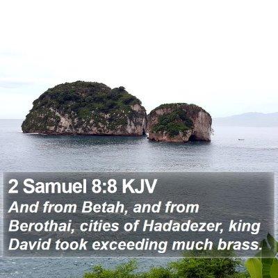 2 Samuel 8:8 KJV Bible Verse Image