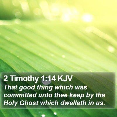 2 Timothy 1:14 KJV Bible Verse Image