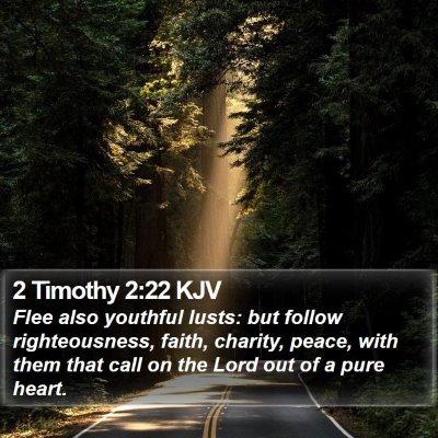 2 Timothy 2:22 KJV Bible Verse Image