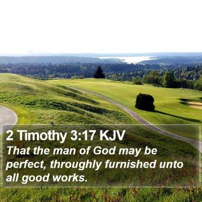 2 Timothy 3:17 KJV Bible Verse Image