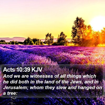 Acts 10:39 KJV Bible Verse Image