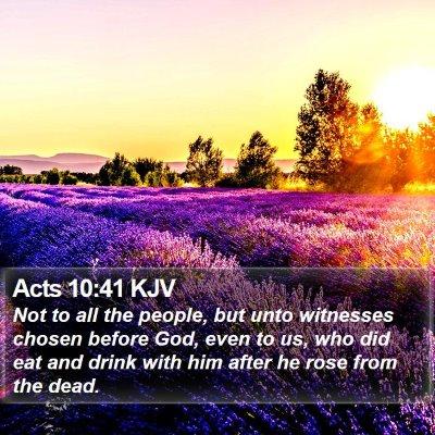 Acts 10:41 KJV Bible Verse Image