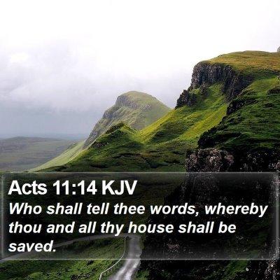 Acts 11:14 KJV Bible Verse Image