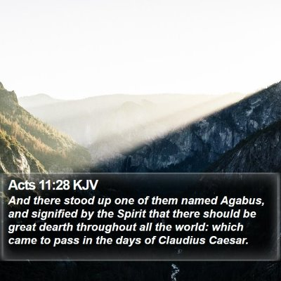 Acts 11:28 KJV Bible Verse Image