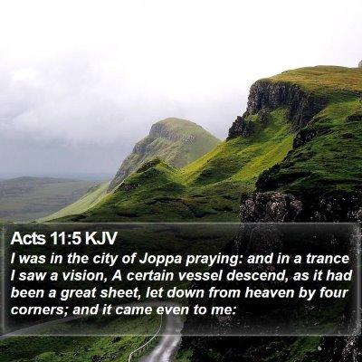 Acts 11:5 KJV Bible Verse Image
