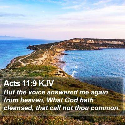 Acts 11:9 KJV Bible Verse Image