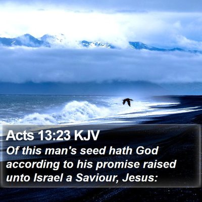 Acts 13:23 KJV Bible Verse Image