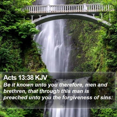 Acts 13:38 KJV Bible Verse Image