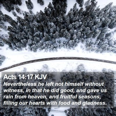 Acts 14:17 KJV Bible Verse Image