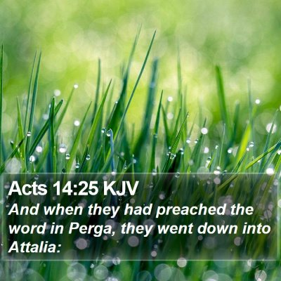 Acts 14:25 KJV Bible Verse Image