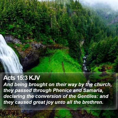 Acts 15:3 KJV Bible Verse Image