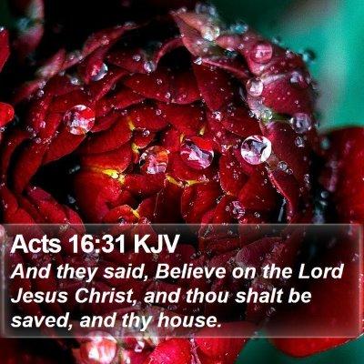 Acts 16:31 KJV Bible Verse Image