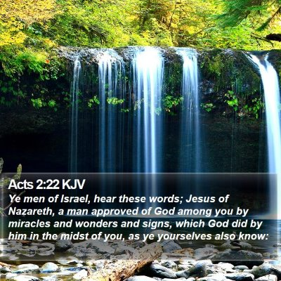 Acts 2:22 KJV Bible Verse Image