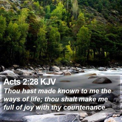 Acts 2:28 KJV Bible Verse Image