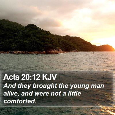 Acts 20:12 KJV Bible Verse Image
