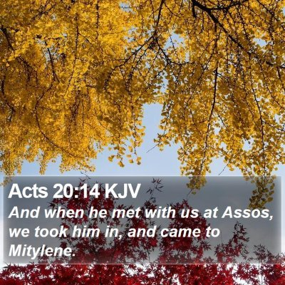Acts 20:14 KJV Bible Verse Image