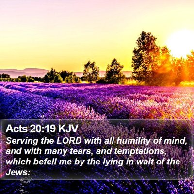 Acts 20:19 KJV Bible Verse Image