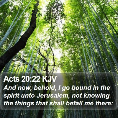 Acts 20:22 KJV Bible Verse Image