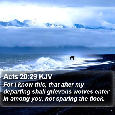 Acts 20:29 KJV Bible Verse Image